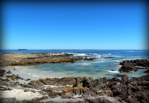 201 SS Robben Island
